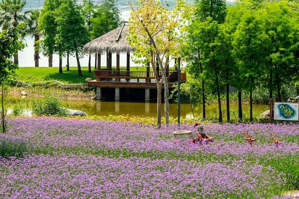 厦门园林博览苑五月的颜色-11.jpg